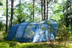 Blue large four-seater camping tent stands in shade of pine forest, weather is sunny. Summer camp, rest, hike. stock photography