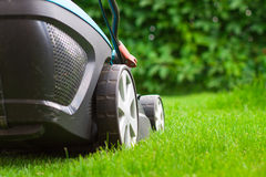 Blue lawn mower on green grass Stock Photo