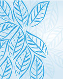 Blue leafs Stock Image