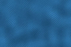 Blue leather. Texture of iguana skin, a close-up, blue color Stock Photography