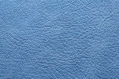 Blue leather Stock Images