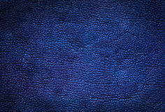 Blue leather background. Stock Image