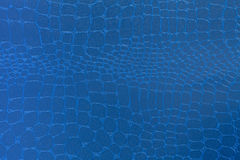Blue leather texture background. Closeup photo. Reptile skin. The skin of a crocodile or a snake stock image