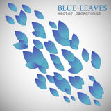 Blue leaves Stock Photos