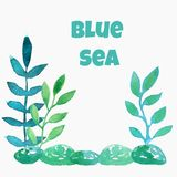 Blue leaves, algae and stones on a white background. vector illustration
