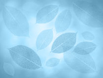 Blue leaves background. Blue background wiht artifical leaves royalty free stock images