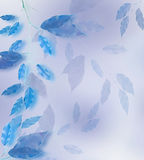 Blue leaves frame. Blue leaves border over blured background Stock Photography