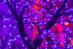Led light sakura artificial flower on tree at night royalty free stock photo