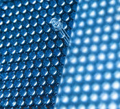 Blue LED Royalty Free Stock Photography