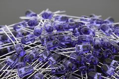 Blue LEDs 5mm royalty free stock images
