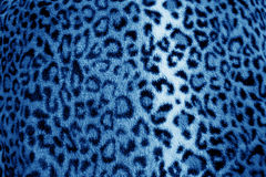 Blue  leopard animal print fur pattern - fabric Royalty Free Stock Photo