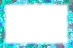 Blue light flower frame isolate on white background Stock Images