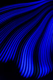 Blue Light Wave. A blue light wave, created with a hoop, rgb led strip and a fisheye lens Royalty Free Stock Photography