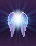 Blue and Lilac Angel Wings on a dark background Stock Photos