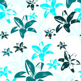 Blue lilies. With white background,  illustration Royalty Free Stock Image