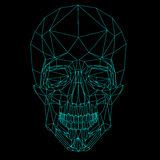 Blue line low poly skull Royalty Free Stock Photo