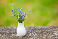 Blue little flowers. Forget-me-not in porcelain vase stock image