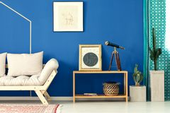Blue living room with cactus. Sofa, bookcase, pattern curtain Stock Photo