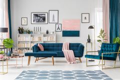 Blue living room. Interior with sofa, bookshelf and art collection royalty free stock images