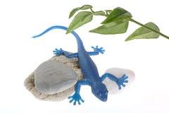 Blue Lizard Royalty Free Stock Image
