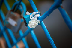 Blue lock wedding. Decorated with flower rose Royalty Free Stock Image
