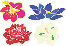 Blue Lotus, White Orchid, Red Rose and pink hibiscus vector Stock Photos