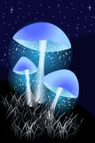 Blue Luminous mushrooms in the night with grass royalty free illustration