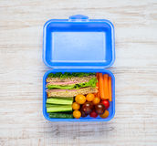 Blue Lunch Box with Vegetables and Sandwich Royalty Free Stock Photos