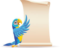 Blue macaw with scroll paper Royalty Free Stock Photos