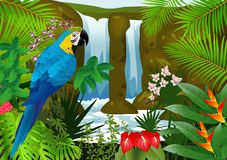 Blue macaw in the tropical forest Stock Photo