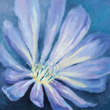Blue macro chicory. Oil painting of the blue macro chicory Stock Photo