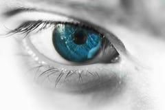 Blue macro eye Royalty Free Stock Image