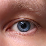 Blue male eye. Closeup Royalty Free Stock Photography