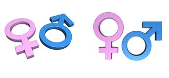 Blue Male/Pink Female Symbol on White. Blue male/pink female symbol isolated with slight shadow on white from angle and front Stock Photos