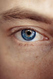 Blue man Eye. Closeup of a male blue eye staring straight stock photos