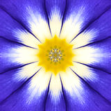 Blue Mandala Flower Center. Concentric Kaleidoscope Design Royalty Free Stock Images