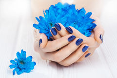 Blue manicure with chrysanthemum flowers. spa Stock Photo