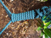 Blue manila rope long spiral knot tie. Blue green grainy texture big manila rope swirl spiral long knot tie, blurred dry brown soil sand and green tree plant Stock Photography