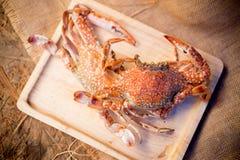 Blue manna crab Royalty Free Stock Photo