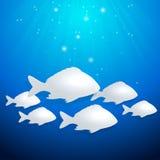 Blue marine background Stock Images