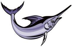 Blue marlin Stock Photo