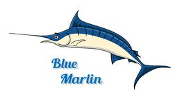 Blue marlin Royalty Free Stock Image