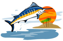 Blue marlin leaping Stock Images