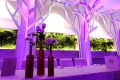 Blue mauve ballroom Royalty Free Stock Photography