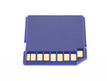 Blue memory SD card Stock Photos
