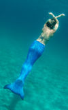 Blue Mermaid in Florida Waters. Model with monofin mermaid tail underwater royalty free stock image