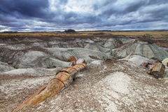 Blue Mesa, Petrified Forest National Park, Stock Photos