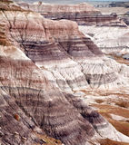 Blue Mesain Petrified Forest National Pa Royalty Free Stock Photo
