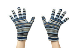 Blue mittens Stock Photos