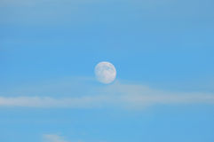 Blue Moon Stock Photography